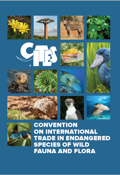 What is CITES? | CITES