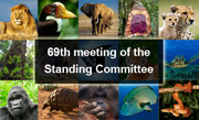 69th meeting of the Standing Committee
