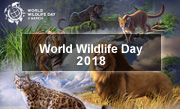 World Wildlifeday 2018