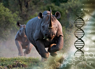 Forensics to support the fight against wildlife crime   CITES
